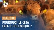 Pourquoi le CETA fait-il polémique ?