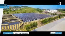 Eurozapping : Whirlpool déchante, la Turquie se met aux panneaux solaires