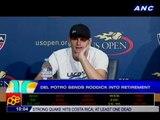 Tennis: Del Potro sends Roddick into retirement