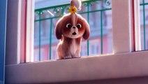 Extrait du film Comme des Bêtes 2  - Daisy demande de l'aide