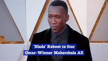 Mahershala Ali Is The Next 'Blade'