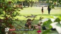 Toulouse : comment la Ville rose s'est mise au vert pour lutter contre la chaleur