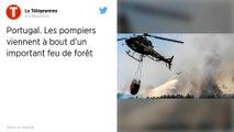 Portugal. Les pompiers ont circonscrit le feu de forêt malgré les conditions difficiles