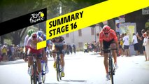 Summary - Stage 16 - Tour de France 2019