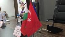 Bulgaristan-Türkiye sınır ötesi iş birliği programı