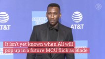 'Blade' Reboot to Star Oscar-Winner Mahershala Ali