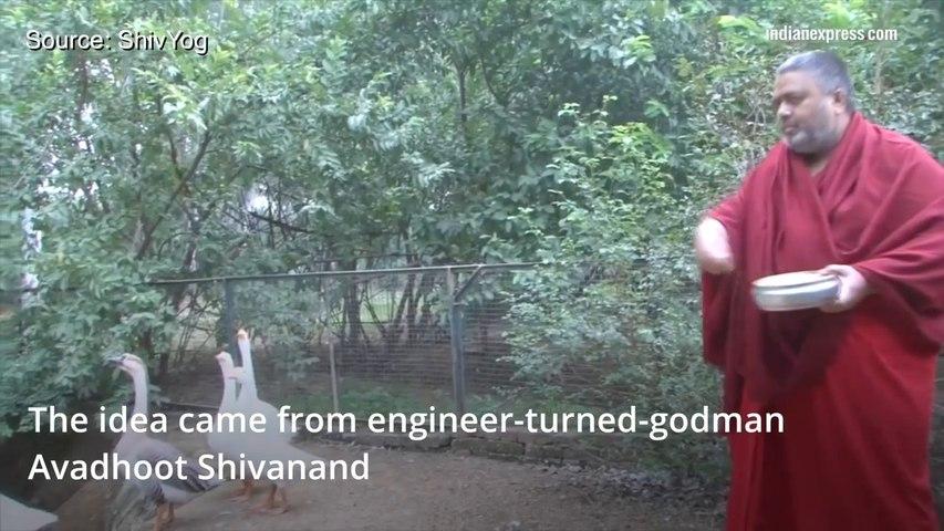 Goa agriculture minister tells farmers say 'Om rom jum sah' for better output