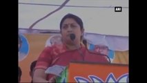 Smriti Irani Takes Dig At Rahul Gandhi, Says Congress Responsible For Halting Food Park Project