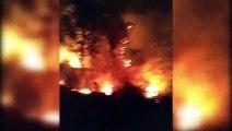 Incêndio de grandes proporções atinge área de vegetação na Região de Nova Aurora