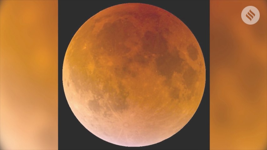 The Super Blood Wolf Moon of 2019: Here's Everything You Need To Know About The Phenomenon