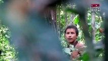 Indígenas difunden imágenes de etnia amazónica aislada y amenazada por madereros en Brasil