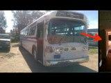 Sie kauft diesen Schrott-Bus. 3 Jahre später hat sie etwas Unglaubliches daraus gemacht!