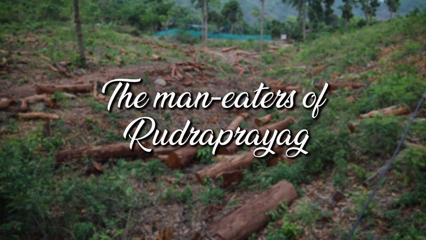 Leopards of Rudraprayag | Revisiting the man-eating leopard(s) of Rudraprayag | Uttarakhand