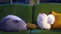 Comme des Bêtes 2 Film  Extrait - Gidget remarque quelque chose
