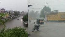 राजस्थान बारिश अपडेट : कई जिलों में भारी बारिश, सीकर में बाढ़ जैसे हालात, इन चार जगहों पर अलर्ट
