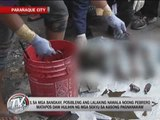 Skeletons of 2 men found in septic tank