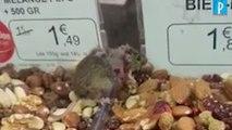 Une souris dans un étal de supermarché Grand Frais