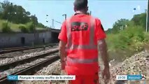 Canicule : pourquoi la SNCF doit prendre des mesures