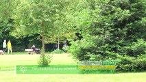 Budget Participatif - Parc Paul Mistral au sommet