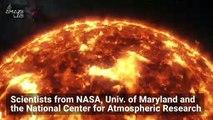 'Terminators' On the Sun Trigger Solar Tsunamis and New Sunspots