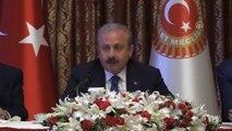 TBMM Başkanı Mustafa Şentop (2) - TBMM