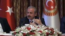 TBMM Başkanı Mustafa Şentop (4) - TBMM