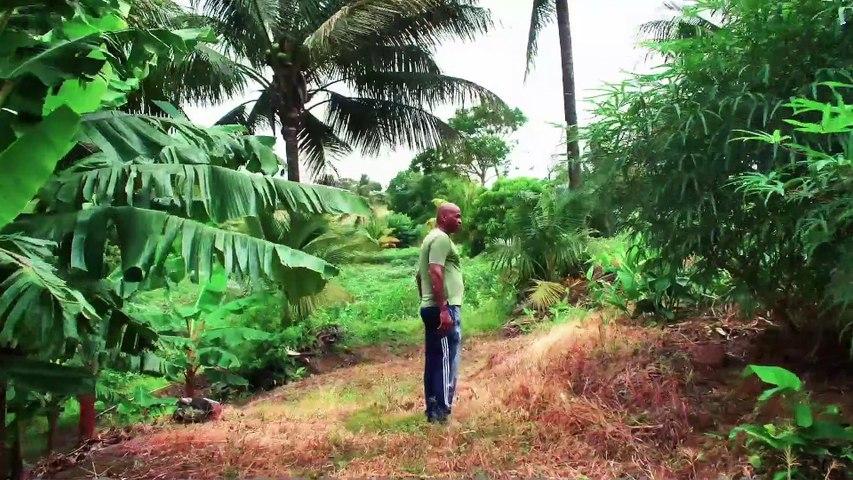 Présentation du dispositif LEADER 2014 - 2020 du GAL Nord Martinique