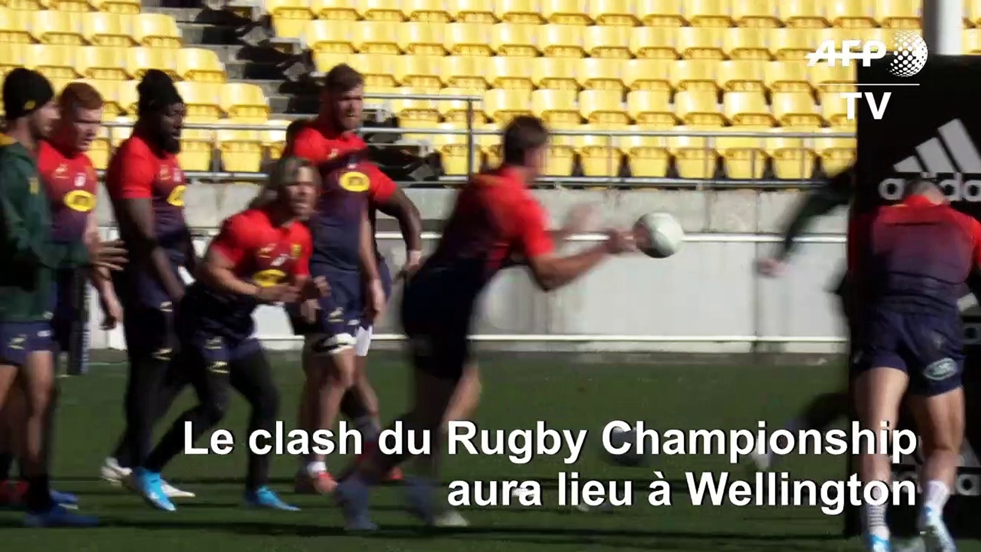 L Equipe De Rugby Sud Africaine S Entraine Avant Le Match Contre Les All Blacks