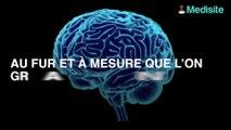Le surpoids est-il responsable du vieillissement prématuré du cerveau ?