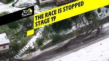 La course est arrêtée / The race has been stopped - Étape 19 / Stage 19 - Tour de France 2019
