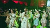 First Rabbit - Koji matsuri ~ kojima haruna kansha-sai