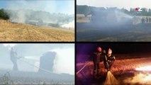 Incendies : le nord de la France désormais concerné