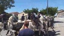 Week-end de fête votive à Gallician : abrivado des Iscles et concours d'abrivado