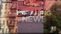 Des jumeaux âgés d'un an environ sont morts après avoir été oubliés dans une voiture pendant huit heures à New York