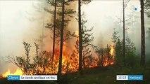 Incendies : des millions d'hectares partis en fumée dans le cercle arctique
