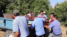 Kula'da şüpheli ölüm... Su borusu bağlamak için gittiği dere yatağında ölü bulundu
