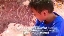 Un enfant trouve un nid d'oeufs de dinosaure