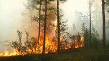 La Sibérie en proie à d'importants incendies