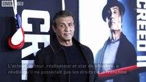 Pourquoi Rocky n'appartient pas à Sylvester Stallone