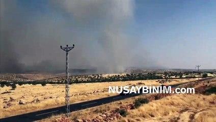 Nusaybin - Midyat Bagok dağında yangın çıktı