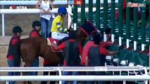 Worst Horse Racing Accident I've ever seen - Jockey hurts after steped by another horse -jockeys fell and being hampered by another horse