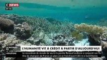 L'humanité vit à crédit à partir d'aujourd'hui: Elle a déjà consommé toutes les ressources naturelles qu'offre la planète - VIDEO