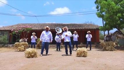 Los Tejones Del Arroyo - El Huérfano