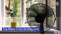 Tips to Beat the Heat Without AC