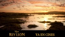"""El Rey León """"éxito en cines"""" TV Spot (HD)"""