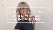 Everything To Expect When You Go Platinum Blonde
