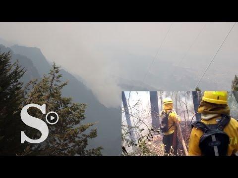 Video: así se atacan las llamas en los cerros orientales de Bogotá