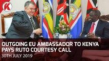 Outgoing EU Ambassador to Kenya Pays Ruto Courtesy Call