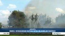 BMKG Imbau Warga Waspadai Kebakaran Hutan