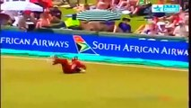 Best Catches in Cricket History! Best Acrobatic Catches! PART-1 (Please comment the best catch) - YouTube